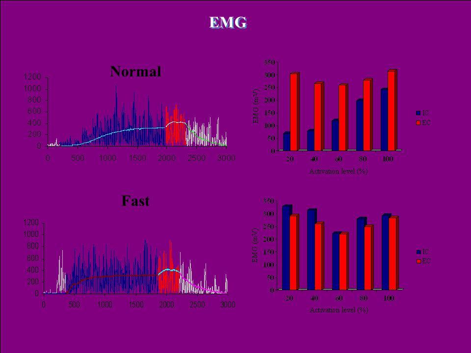 Dr. Tihanyi József: EMG Normal Fast