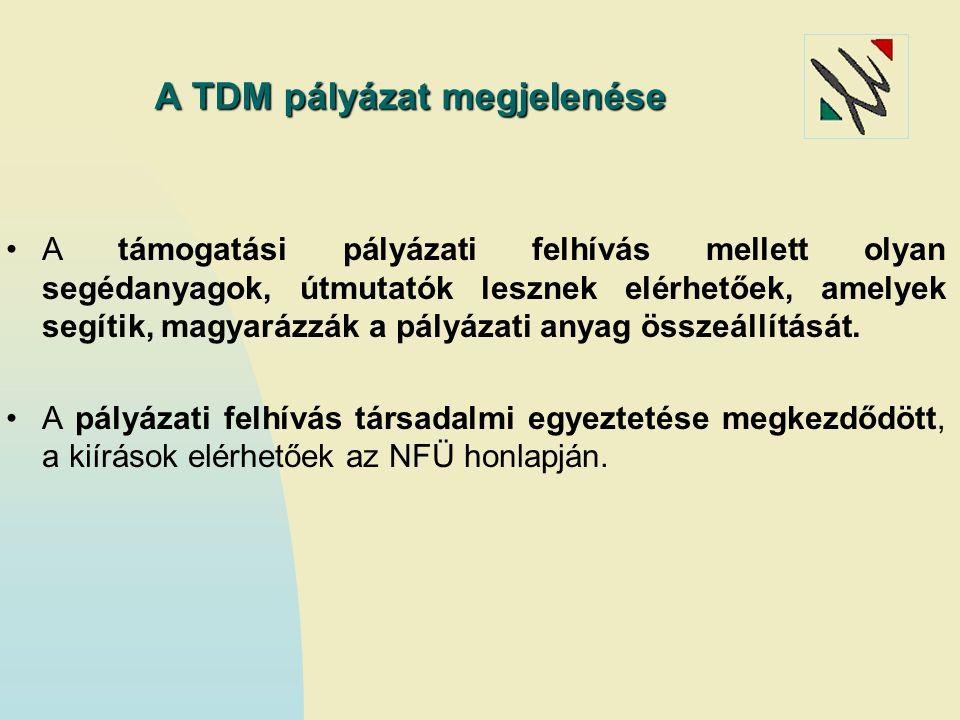 A TDM pályázat megjelenése