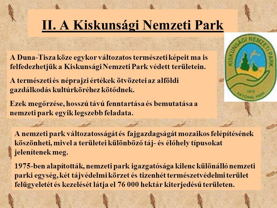 II. A Kiskunsági Nemzeti Park