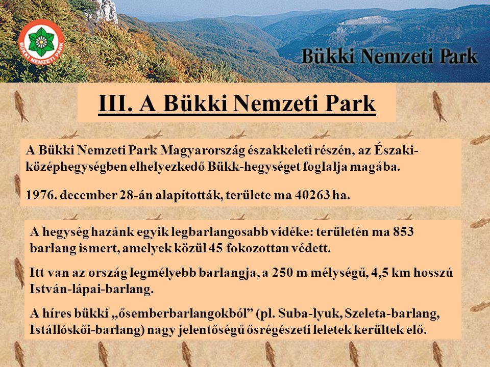 III. A Bükki Nemzeti Park