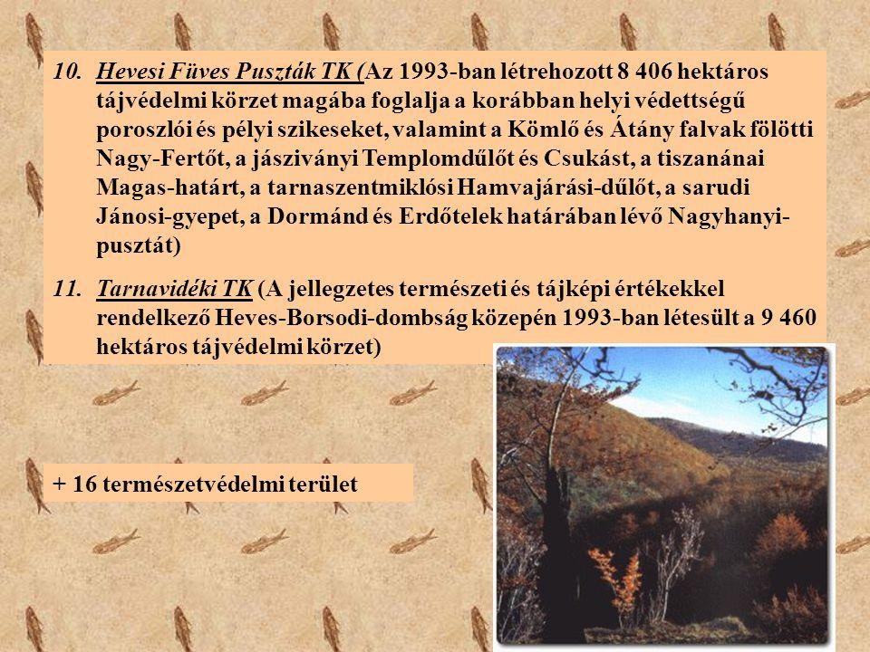 Hevesi Füves Puszták TK (Az 1993-ban létrehozott 8 406 hektáros tájvédelmi körzet magába foglalja a korábban helyi védettségű poroszlói és pélyi szikeseket, valamint a Kömlő és Átány falvak fölötti Nagy-Fertőt, a jásziványi Templomdűlőt és Csukást, a tiszanánai Magas-határt, a tarnaszentmiklósi Hamvajárási-dűlőt, a sarudi Jánosi-gyepet, a Dormánd és Erdőtelek határában lévő Nagyhanyi-pusztát)