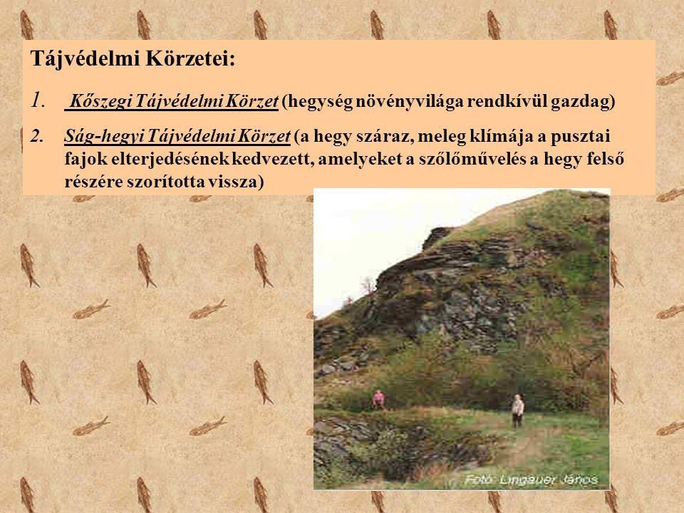 Kőszegi Tájvédelmi Körzet (hegység növényvilága rendkívül gazdag)