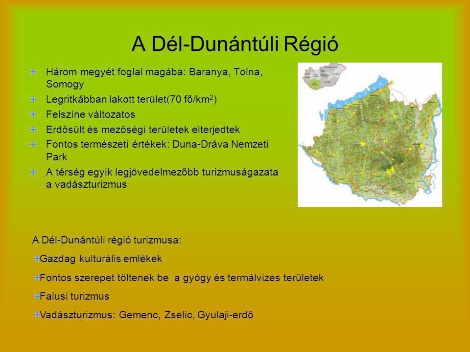 A Dél-Dunántúli Régió Három megyét foglal magába: Baranya, Tolna, Somogy. Legritkábban lakott terület(70 fő/km2)