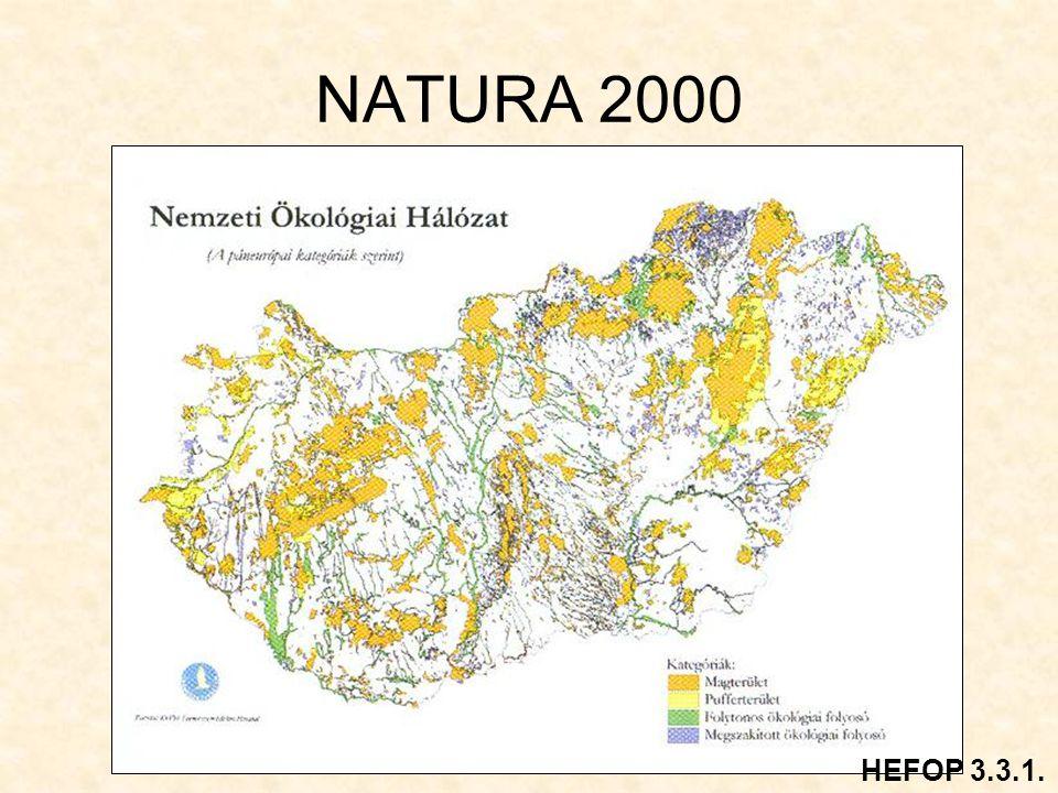 NATURA 2000 HEFOP 3.3.1.