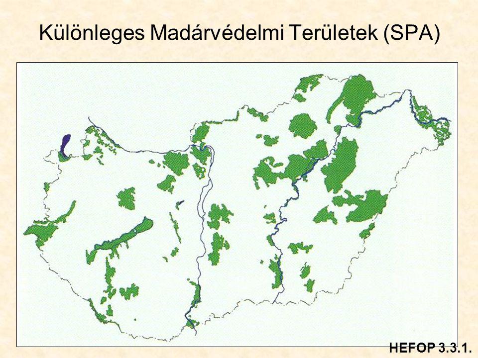 Különleges Madárvédelmi Területek (SPA)