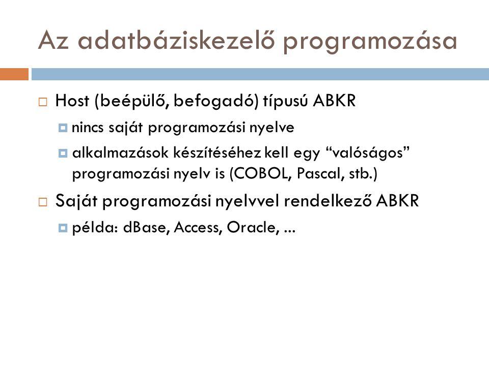 Az adatbáziskezelő programozása