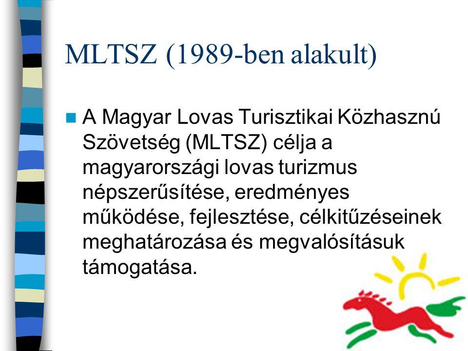 MLTSZ (1989-ben alakult)