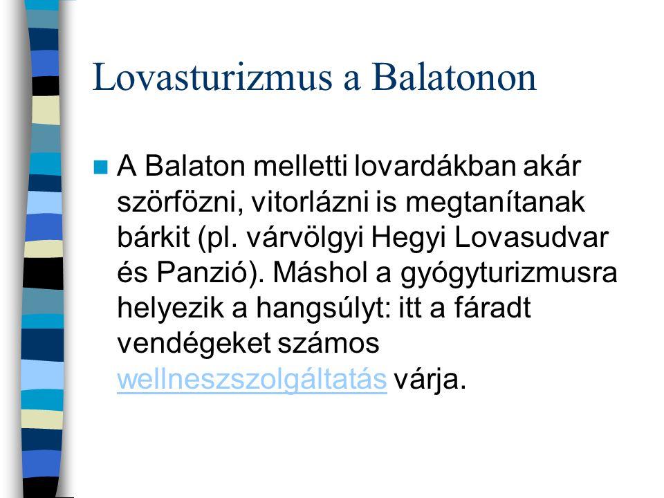 Lovasturizmus a Balatonon