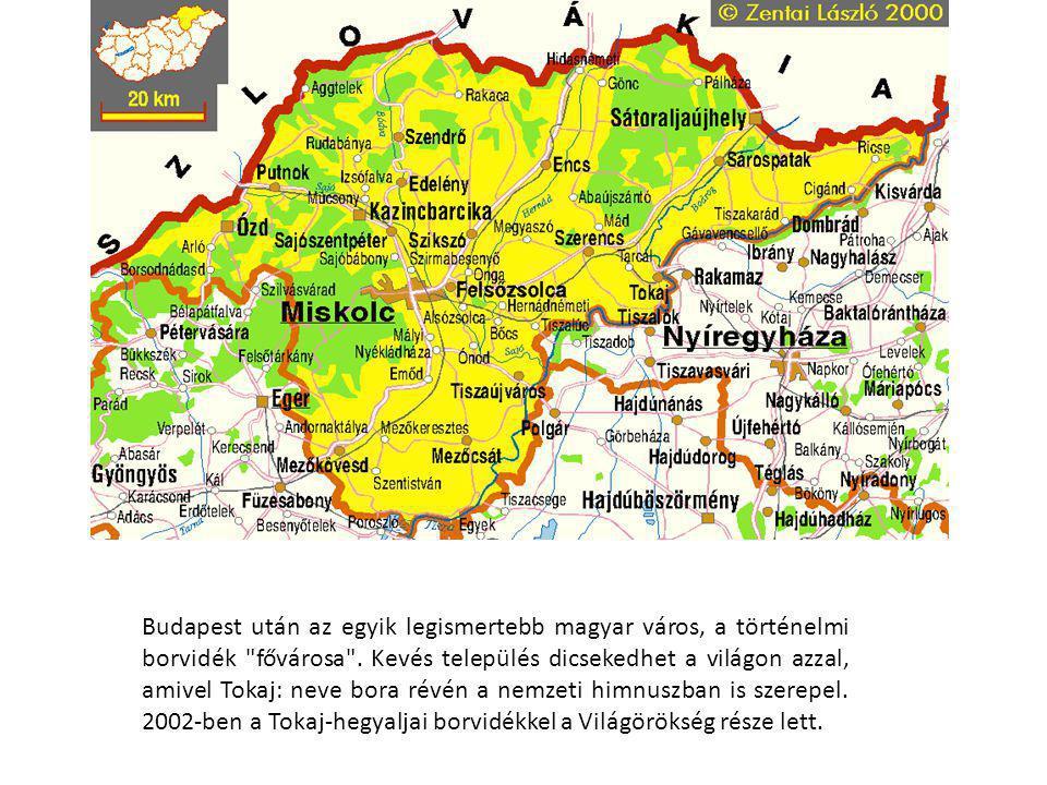 Budapest után az egyik legismertebb magyar város, a történelmi borvidék fővárosa .
