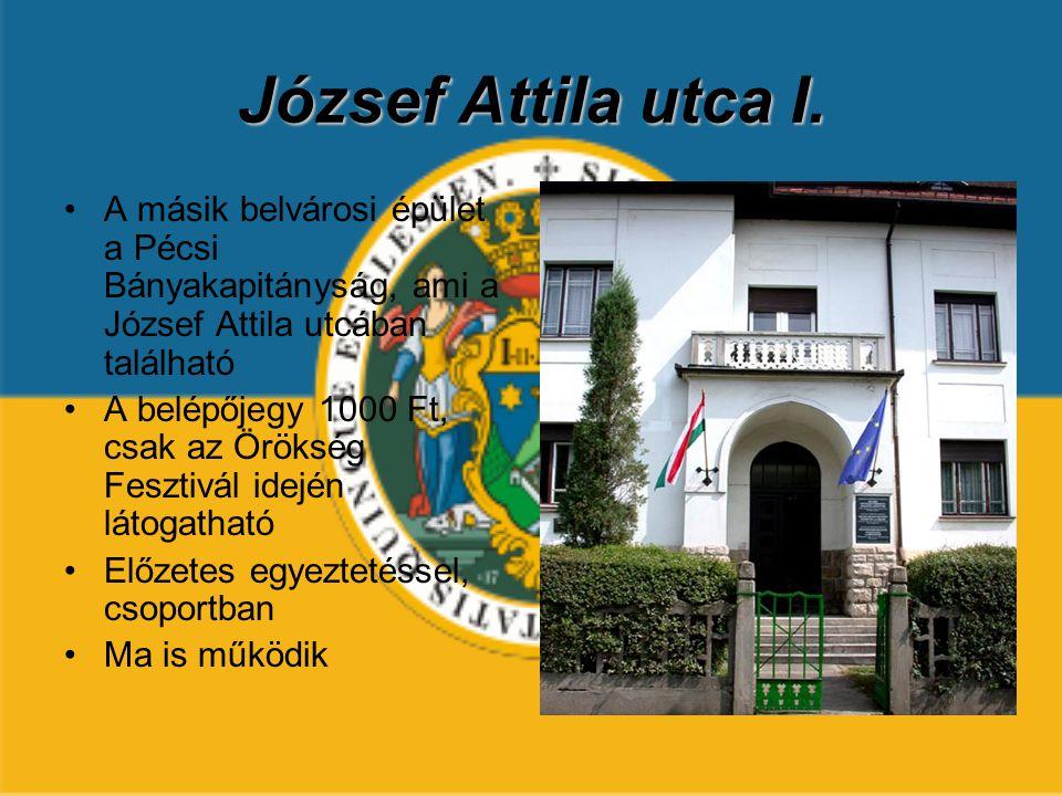 József Attila utca I. A másik belvárosi épület a Pécsi Bányakapitányság, ami a József Attila utcában található.
