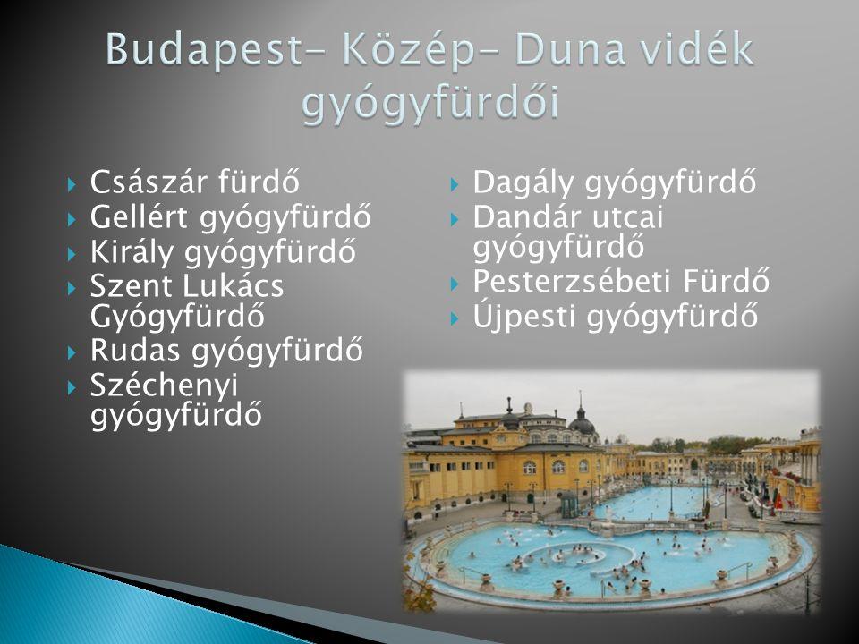 Budapest- Közép- Duna vidék gyógyfürdői