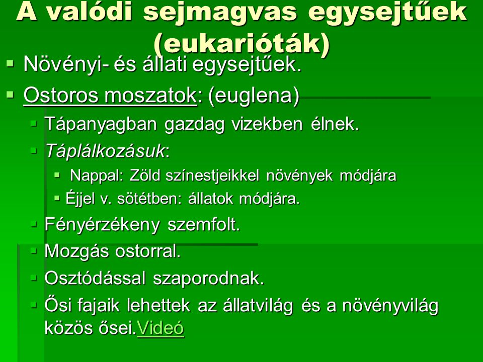 A valódi sejmagvas egysejtűek (eukarióták)