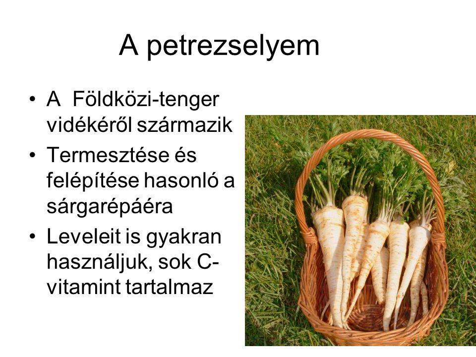 A petrezselyem A Földközi-tenger vidékéről származik