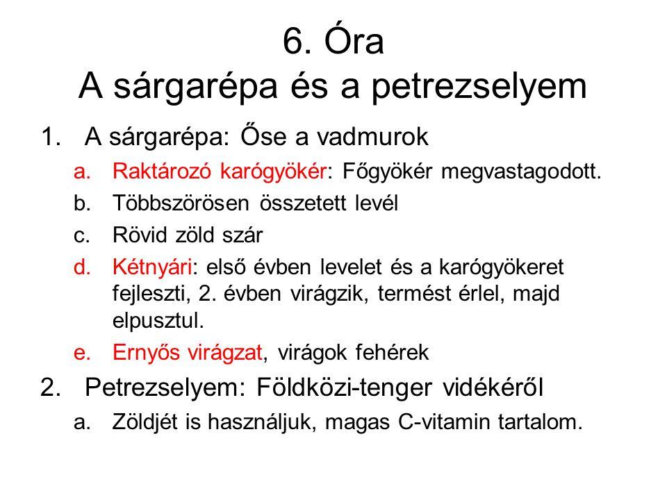 6. Óra A sárgarépa és a petrezselyem