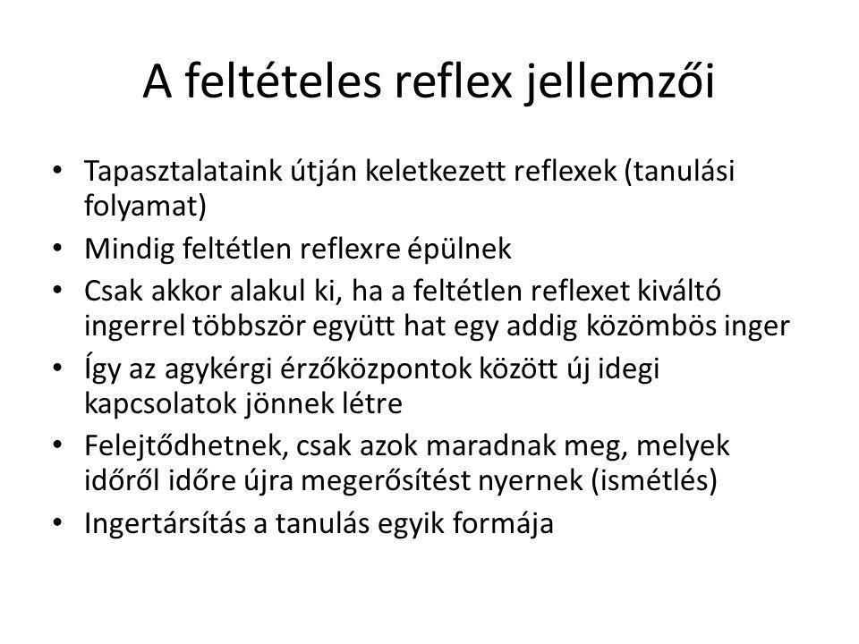 A feltételes reflex jellemzői