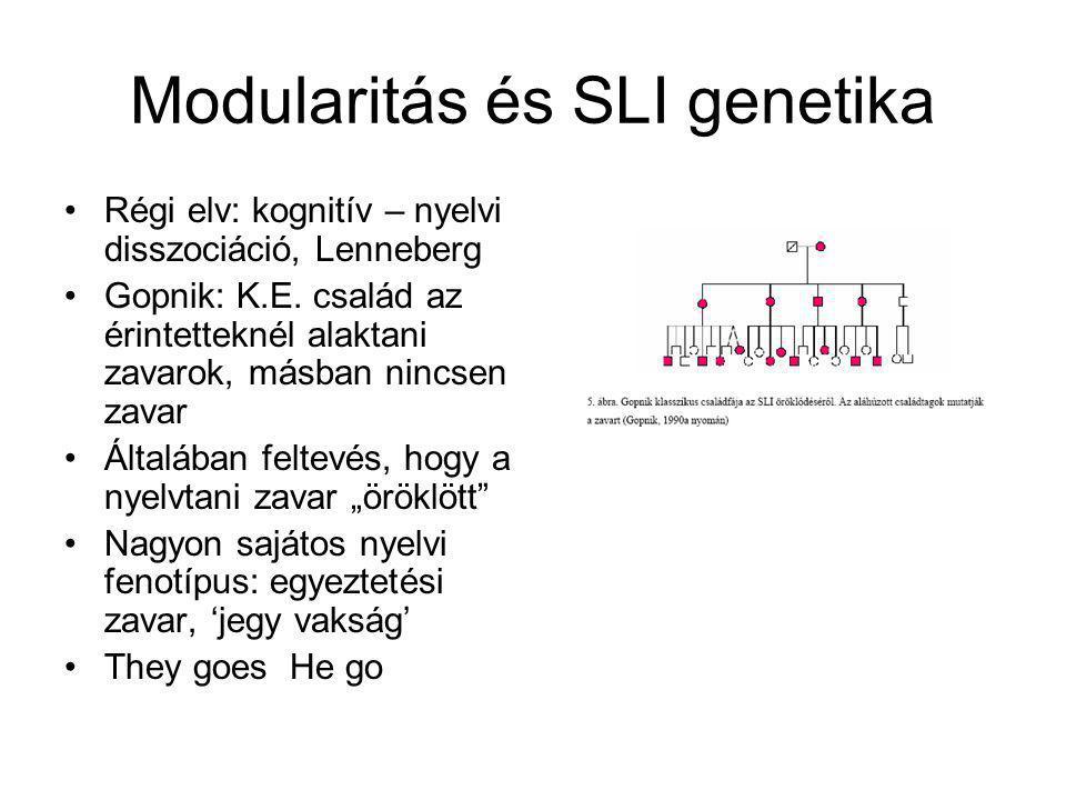 Modularitás és SLI genetika
