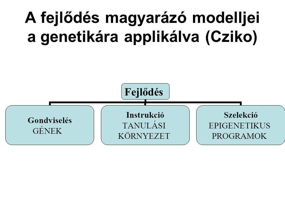 A fejlődés magyarázó modelljei a genetikára applikálva (Cziko)