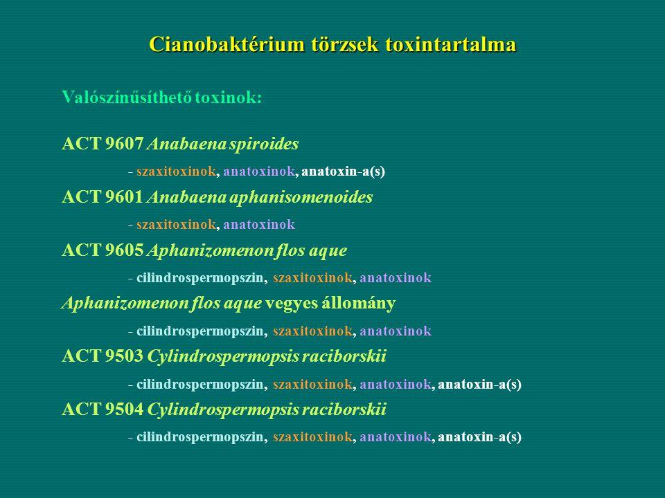 Cianobaktérium törzsek toxintartalma