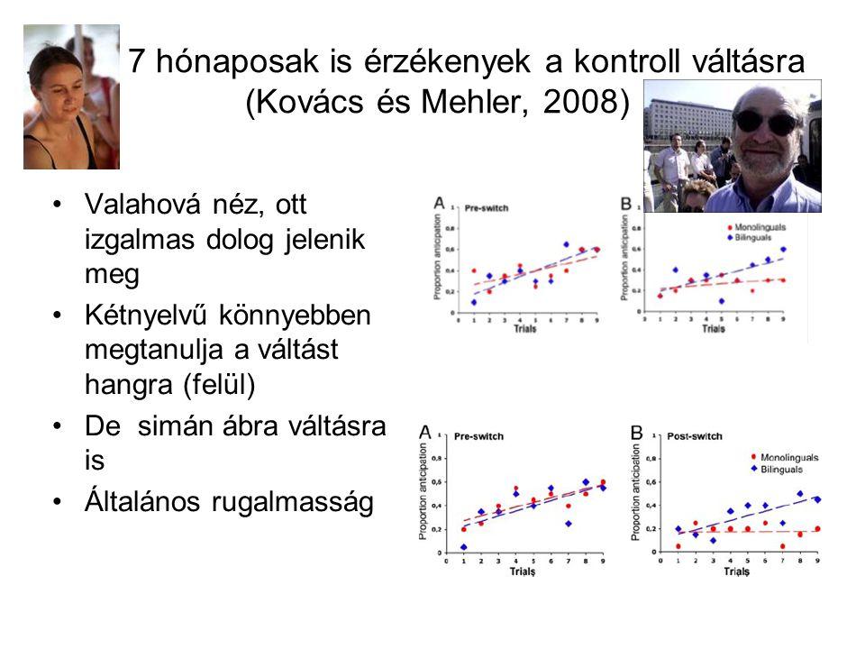 Már 7 hónaposak is érzékenyek a kontroll váltásra (Kovács és Mehler, 2008)