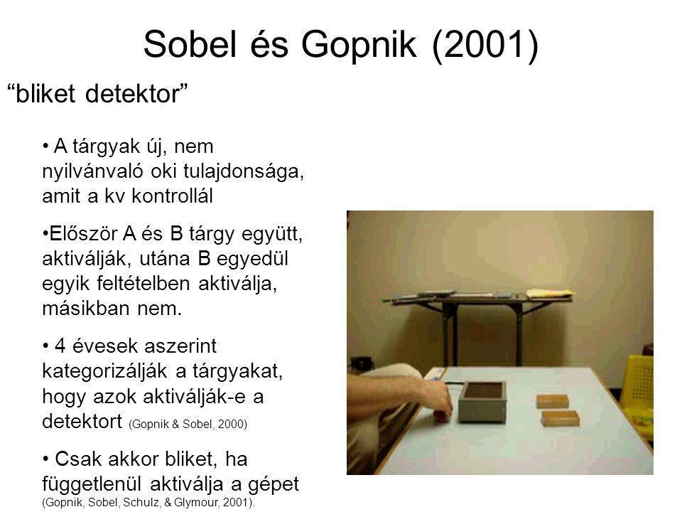Sobel és Gopnik (2001) bliket detektor