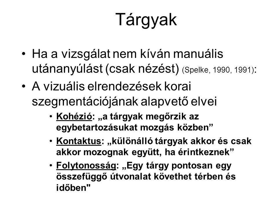 Tárgyak Ha a vizsgálat nem kíván manuális utánanyúlást (csak nézést) (Spelke, 1990, 1991):