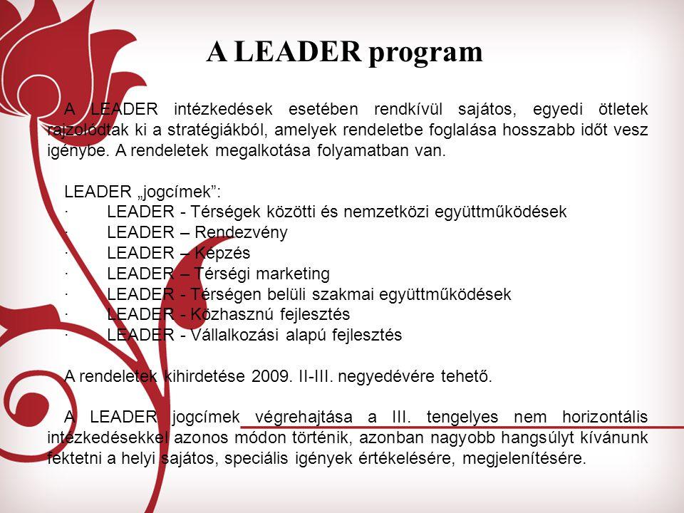 A LEADER program