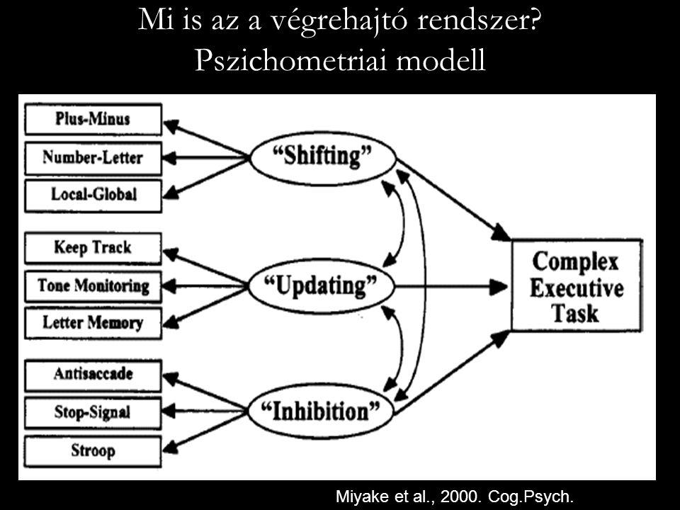 Mi is az a végrehajtó rendszer Pszichometriai modell
