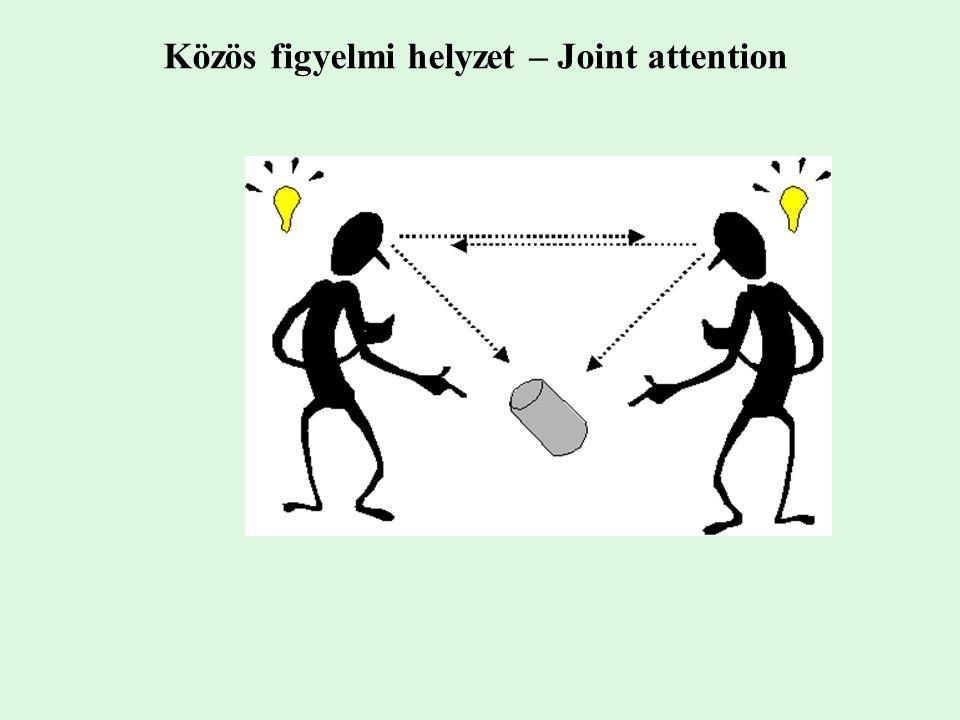 Közös figyelmi helyzet – Joint attention