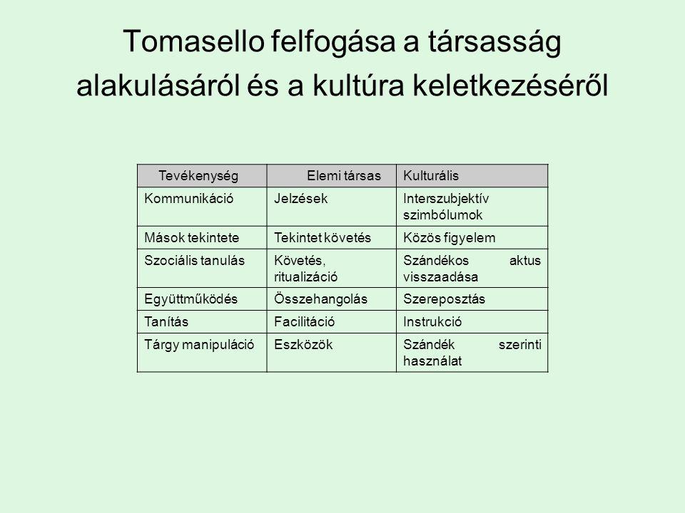 Tomasello felfogása a társasság alakulásáról és a kultúra keletkezéséről