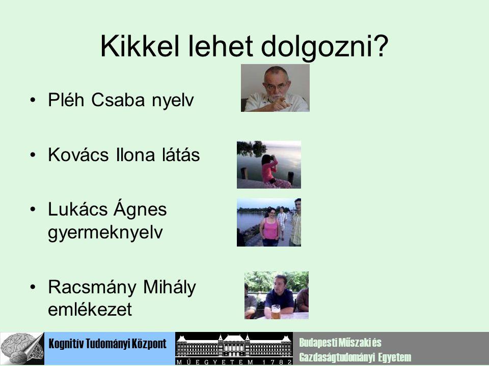 Kikkel lehet dolgozni Pléh Csaba nyelv Kovács Ilona látás