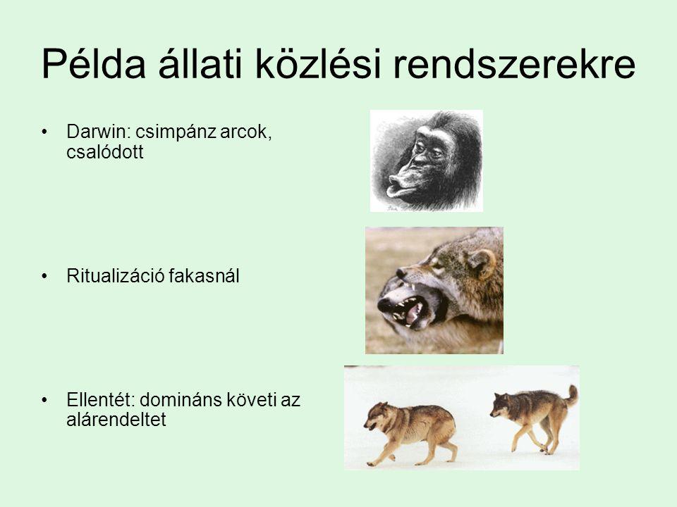 Példa állati közlési rendszerekre