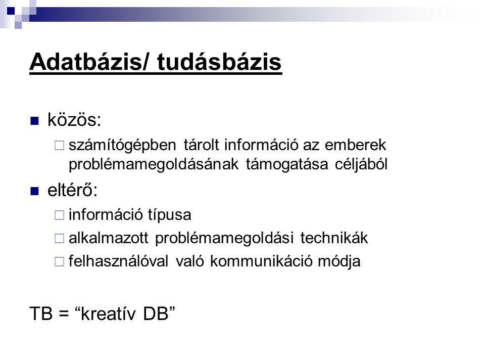 Adatbázis/ tudásbázis