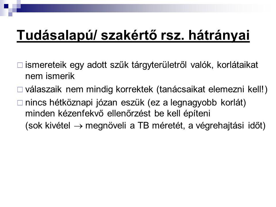 Tudásalapú/ szakértő rsz. hátrányai
