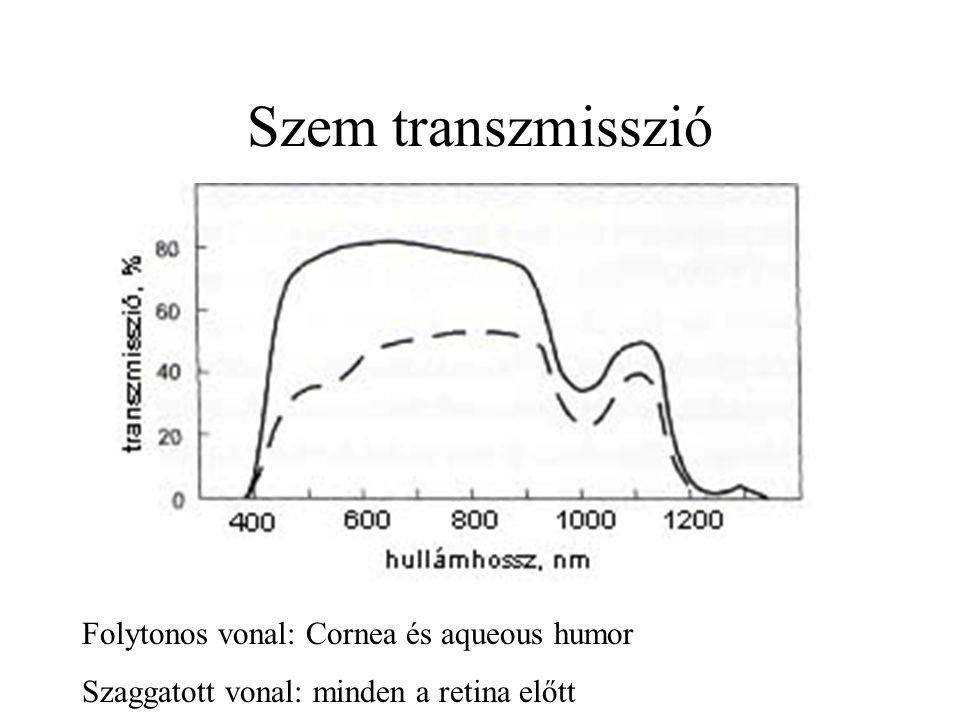 Szem transzmisszió Folytonos vonal: Cornea és aqueous humor
