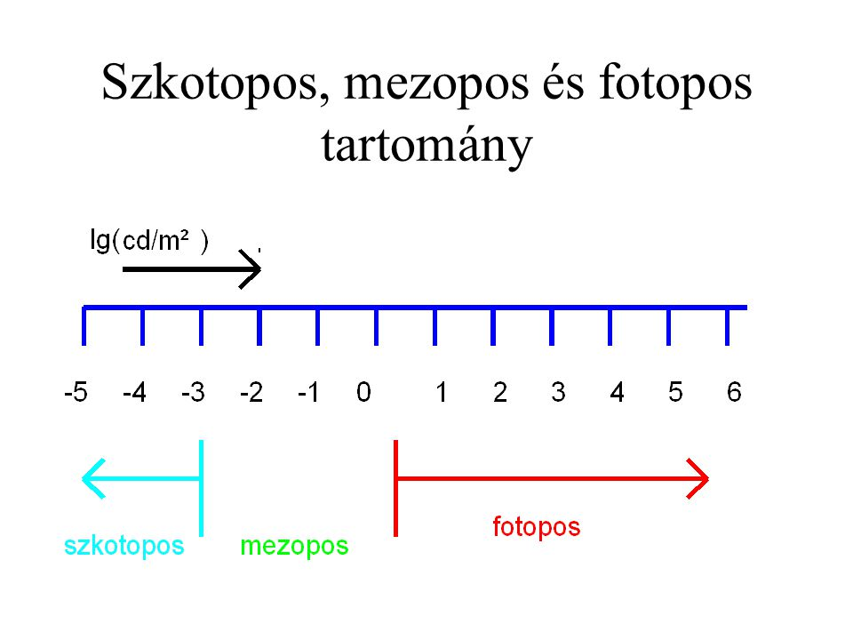 Szkotopos, mezopos és fotopos tartomány