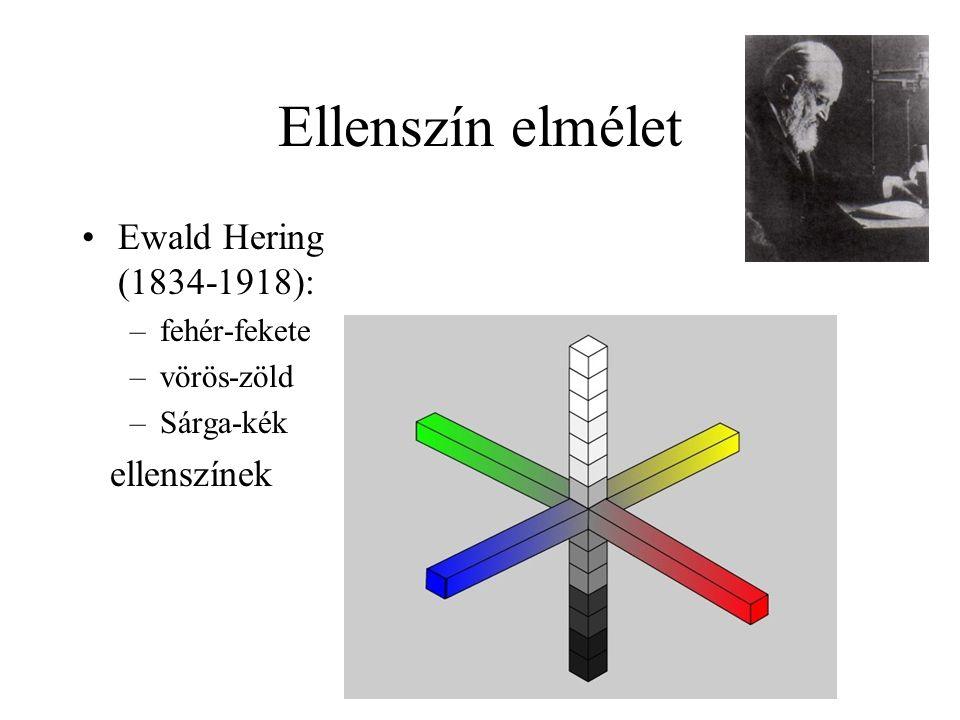 Ellenszín elmélet Ewald Hering (1834-1918): ellenszínek fehér-fekete