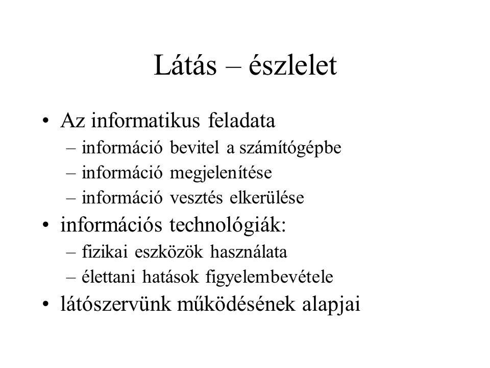 Látás – észlelet Az informatikus feladata információs technológiák: