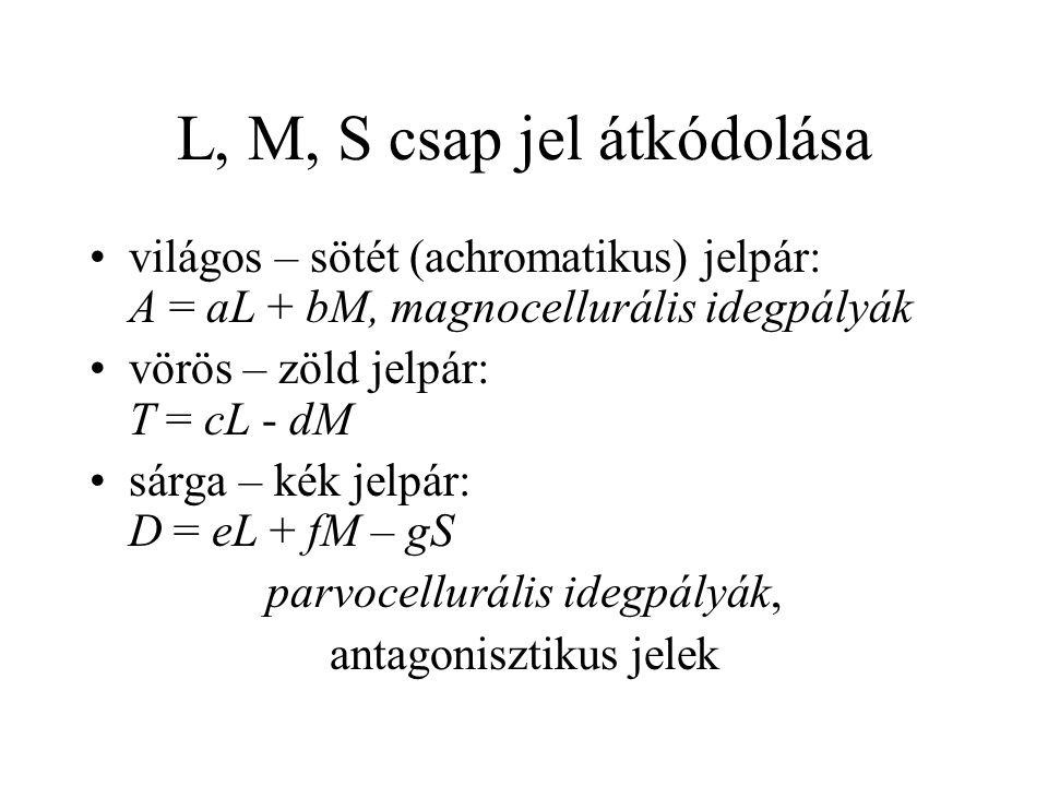 L, M, S csap jel átkódolása