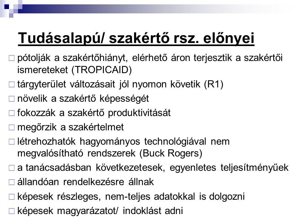 Tudásalapú/ szakértő rsz. előnyei