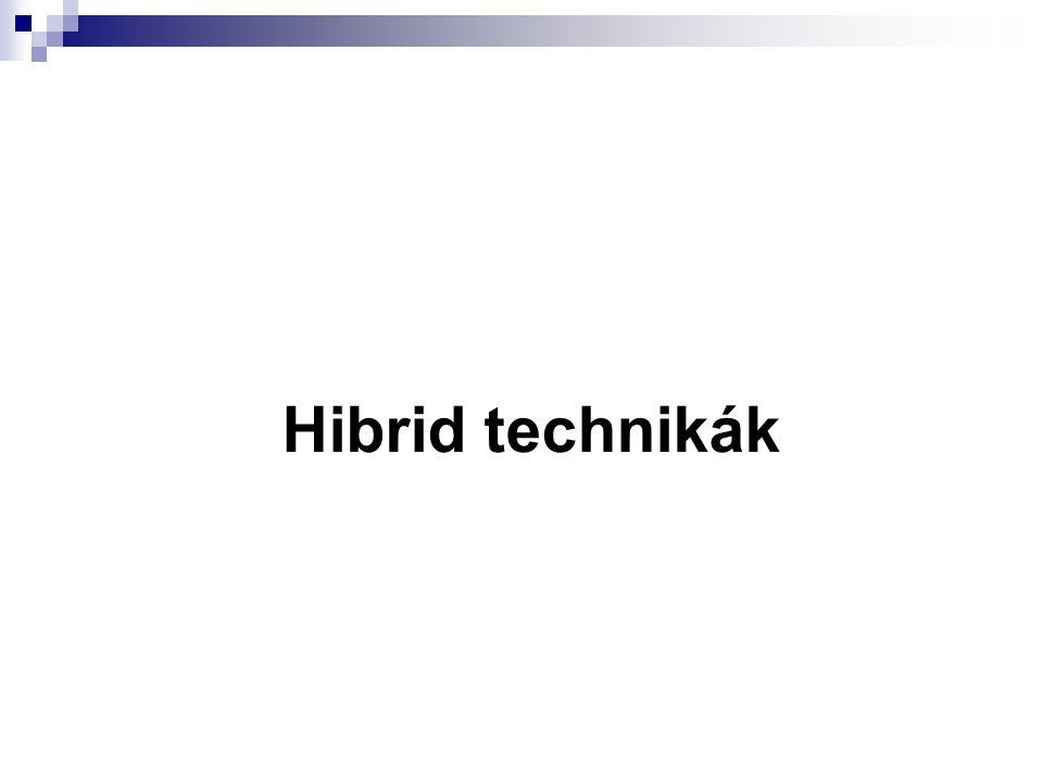 Hibrid technikák