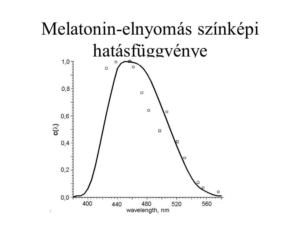 Melatonin-elnyomás színképi hatásfüggvénye