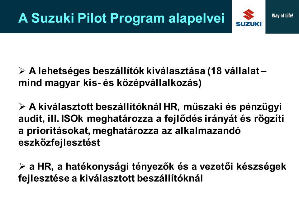 A Suzuki Pilot Program alapelvei