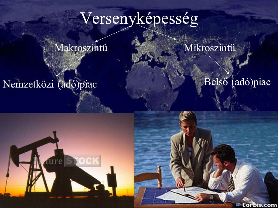Versenyképesség Makroszintű Mikroszintű Belső (adó)piac