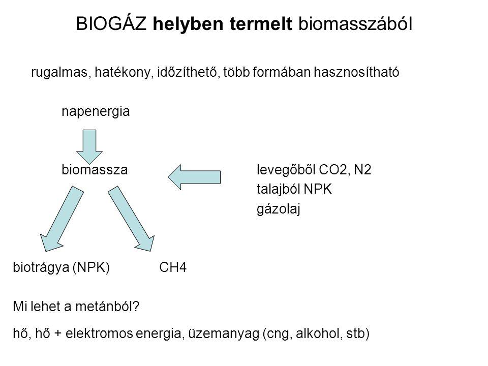 BIOGÁZ helyben termelt biomasszából