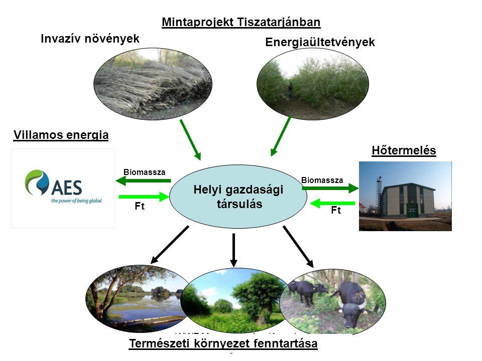 Mintaprojekt Tiszatarjánban Természeti környezet fenntartása