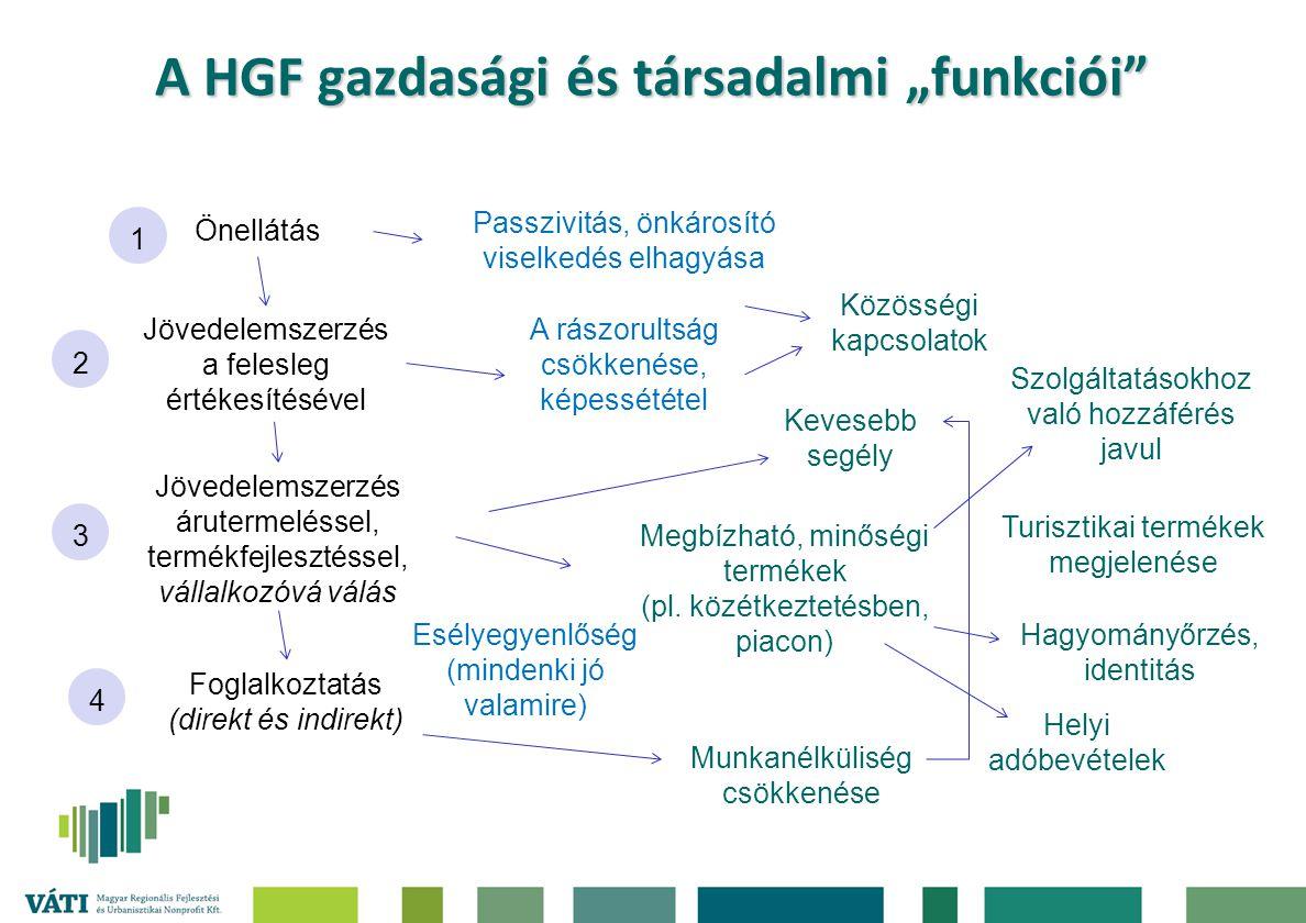 """A HGF gazdasági és társadalmi """"funkciói"""