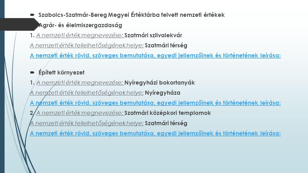 Szabolcs-Szatmár-Bereg Megyei Értéktárba felvett nemzeti értékek