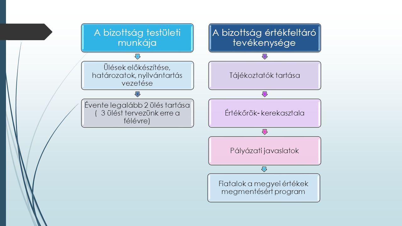 A bizottság testületi munkája A bizottság értékfeltáró tevékenysége