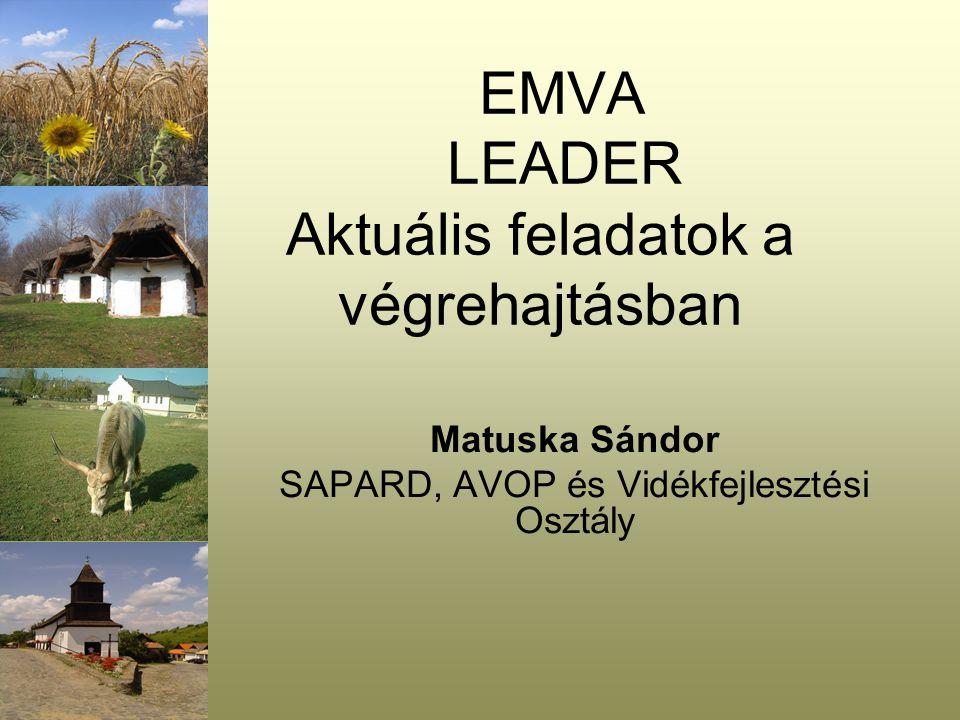 EMVA LEADER Aktuális feladatok a végrehajtásban