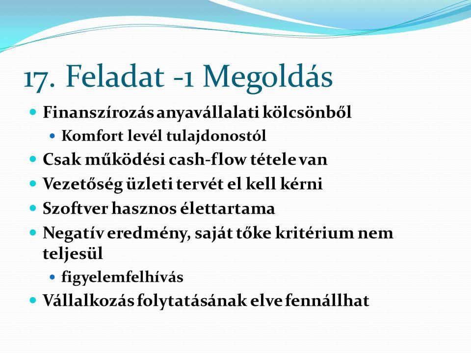 17. Feladat -1 Megoldás Finanszírozás anyavállalati kölcsönből
